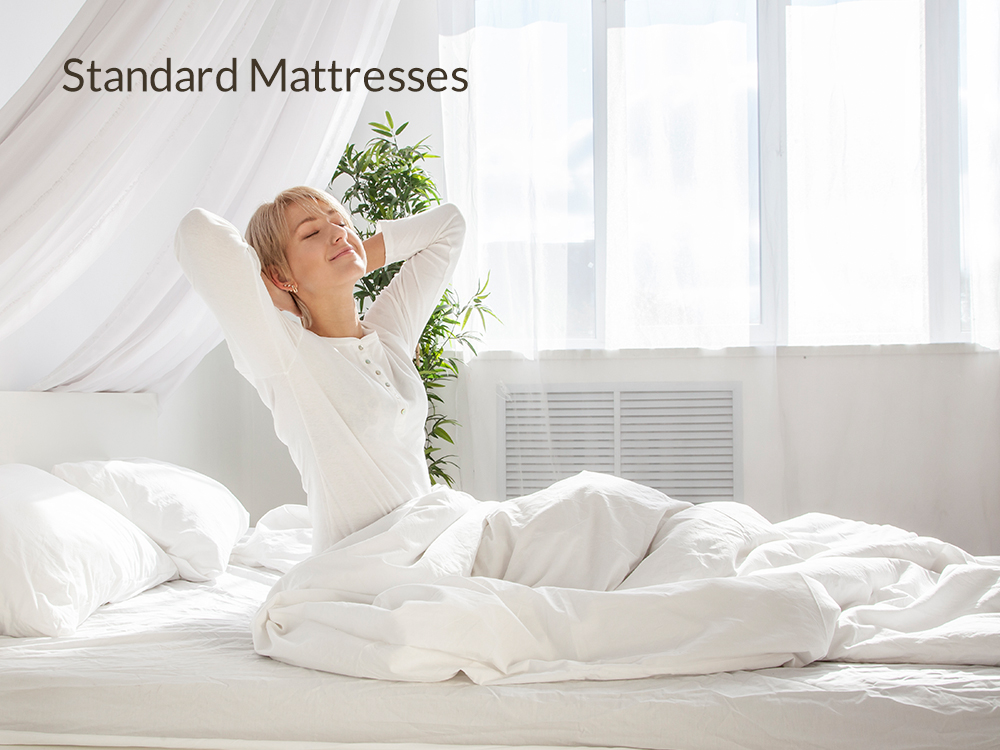 Standard Mattresses at Right Futons & Waterbeds Houston Texas